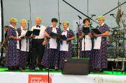 7 Wojewódzkie Świeto Chrzanu w Osjakowie (aparat 1)