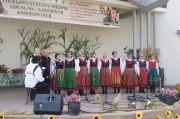Festiwal Folklorystyczny FOLLK - 11.08.2013