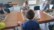 Gra w szachy i pływanie to sport i edukowanie